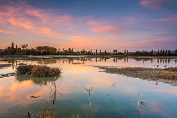 colorful swamp at sundown stock photo