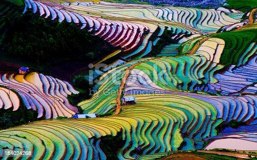 Colorful terraced rice field in water season.