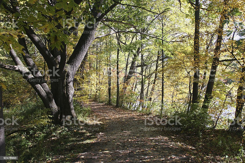 Colorful Trail royalty-free stock photo
