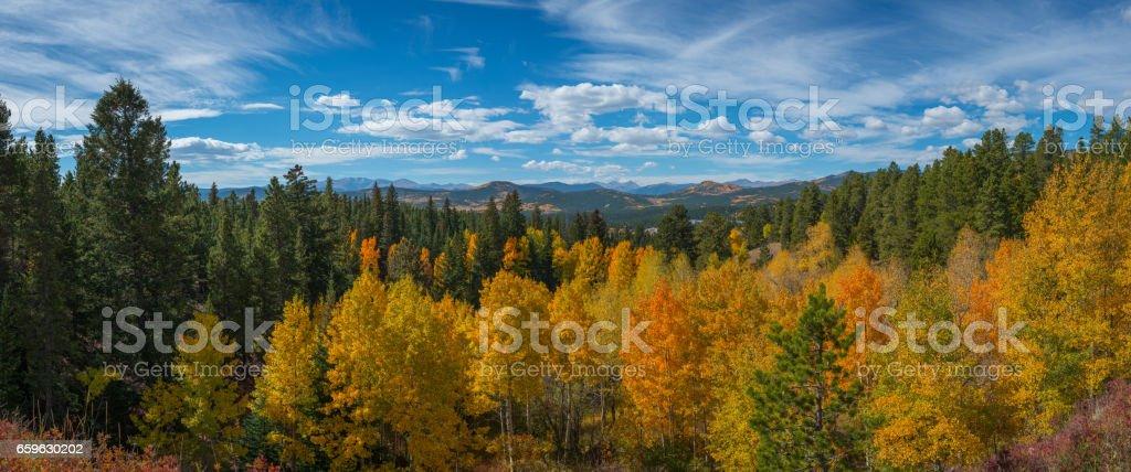 Colorful Tree tops near Rocky Mountain National Park stock photo
