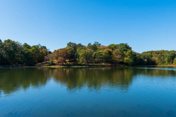 Bunte Bäume im Lake Fairfax Park – Foto