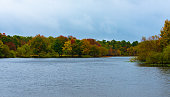 Trees with leaves turning colors in Autumn  line a lake.