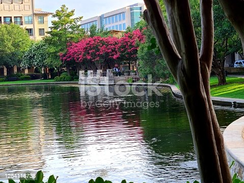 istock Colorful trees surrounding lake 1254116736