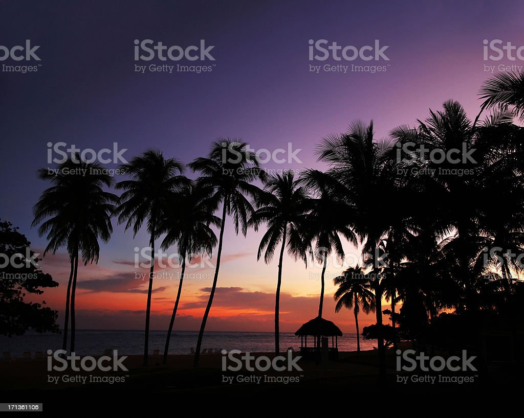 Colorful Tropical Sunset with Palms and Beach Hut royalty-free stock photo