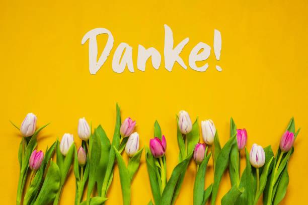Bunte Tulpe, Text Danke bedeutet Danke, gelben Hintergrund – Foto