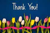 istock Colorful Tulip, Text Thank You, Ribbon, Blue Background 1211287481