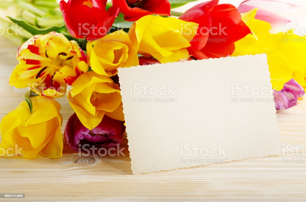 Colorful tulips and blank greeting card on natural wooden background with space for text zbiór zdjęć royalty-free