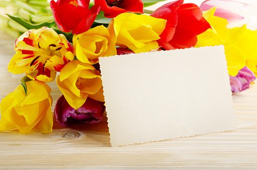 다채로운 튤립 및 텍스트 위한 공간 자연 나무 배경에 빈 인사말 카드 결혼식에 대한 스톡 사진 및 기타 이미지