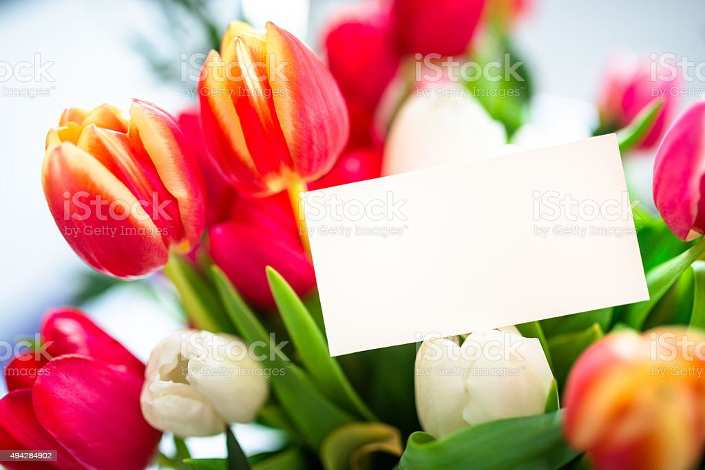 colorful tulips bouquet close up with greeting card stock photo