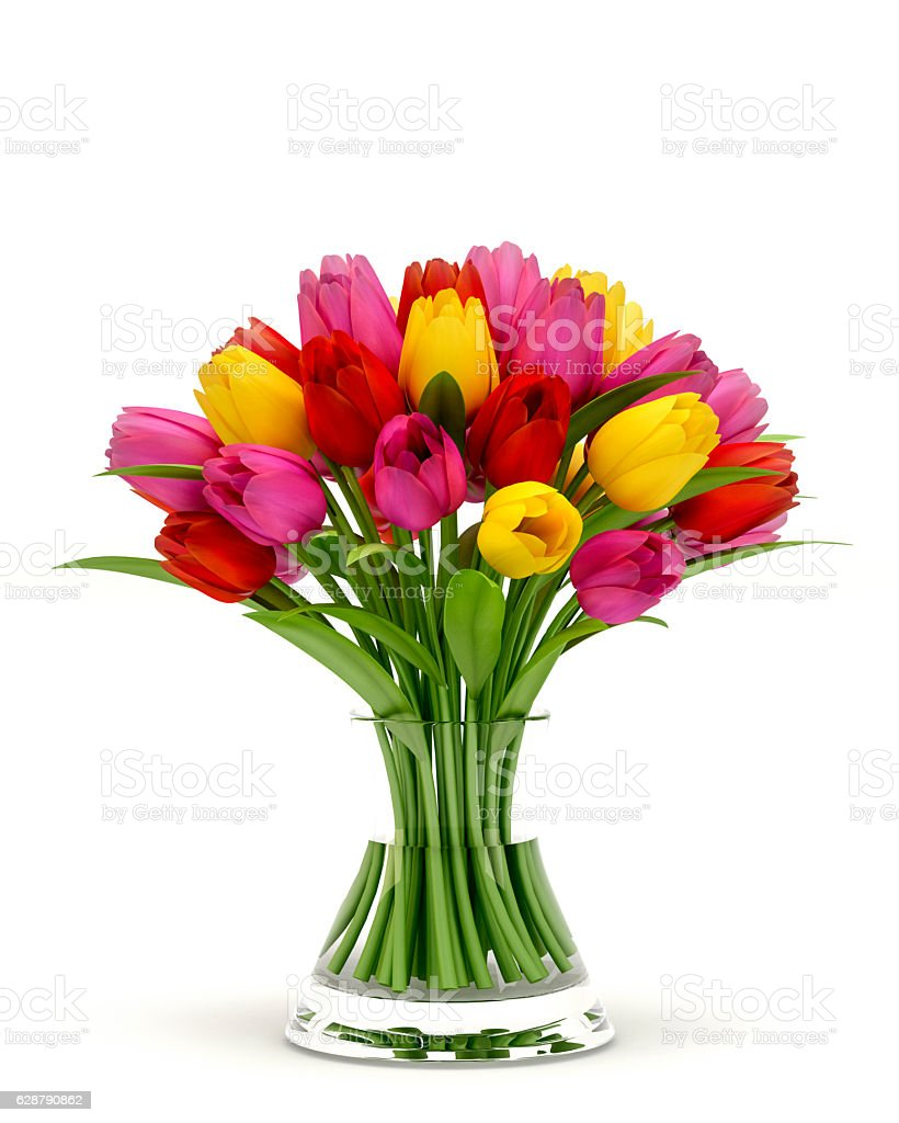 Colorful Tulips In a Glass Vase Isolated On White Background stock photo