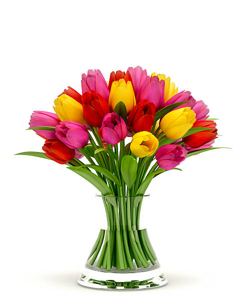 colorful tulips in a glass vase isolated on white background - 花球 個照片及圖片檔