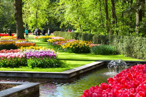 Bunte Tulpen im Keukenhof Park, Holland – Foto