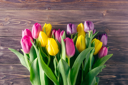 Colorful tulips on a wooden background. Copy space.