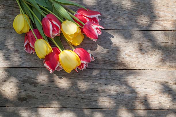 colorful tulips on garden table - meerdere lagen effect stockfoto's en -beelden