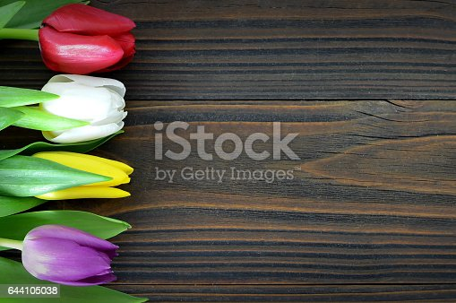 istock Colorful tulips on wooden background 644105038
