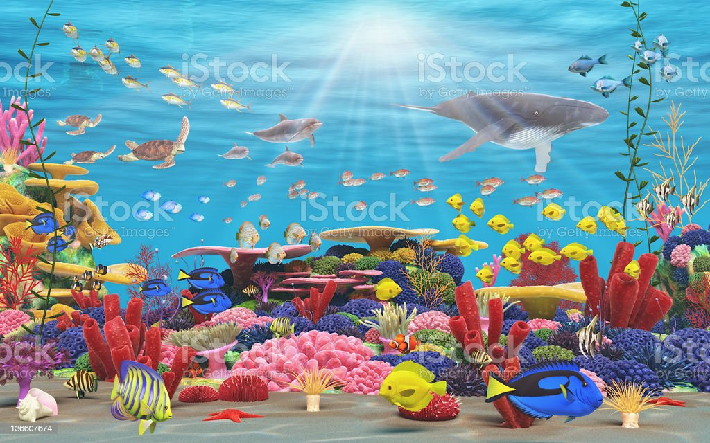 Colorful underwater view of coral, fish, turtle and whales royalty-free stock photo