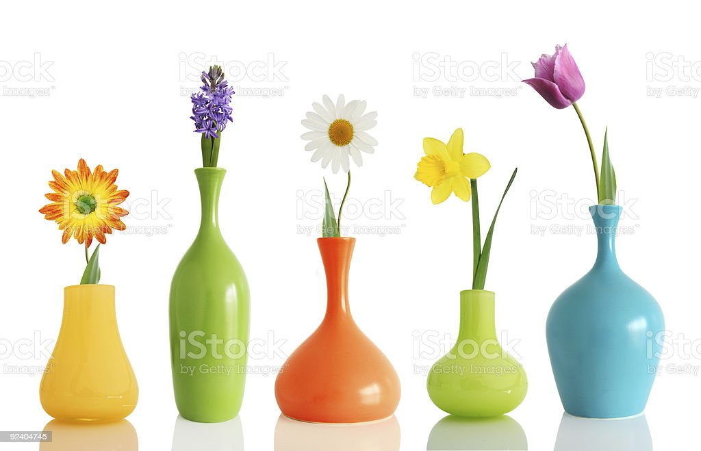 Colorful vases each holding a single flower on white stock photo