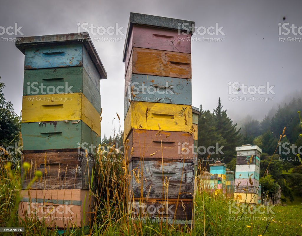 Colorful vintage wooden Bee Hives stock photo