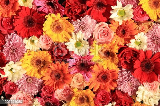 istock Colorful wedding flower arrangement 1209554080