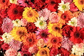 istock Colorful wedding flower arrangement 1209554080