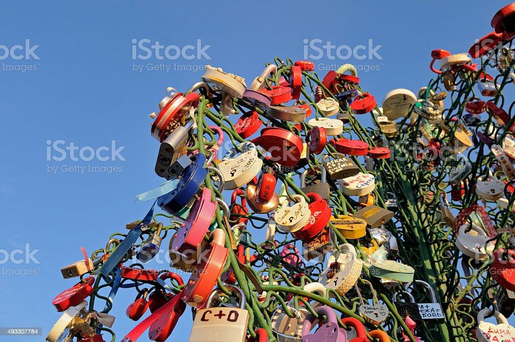 Colorful wedding padlocks on a metal tree against blue sky stock photo