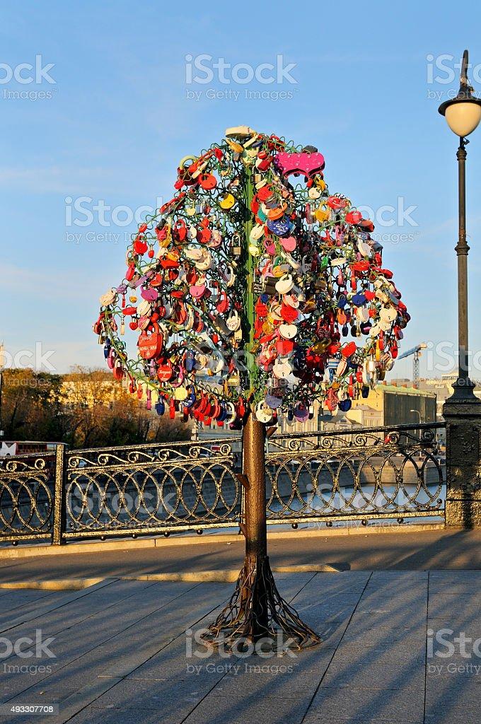 Colorful wedding padlocks on a metal tree stock photo