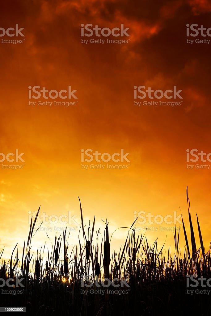 GGG pântanos colorido pôr-do-sol - foto de acervo