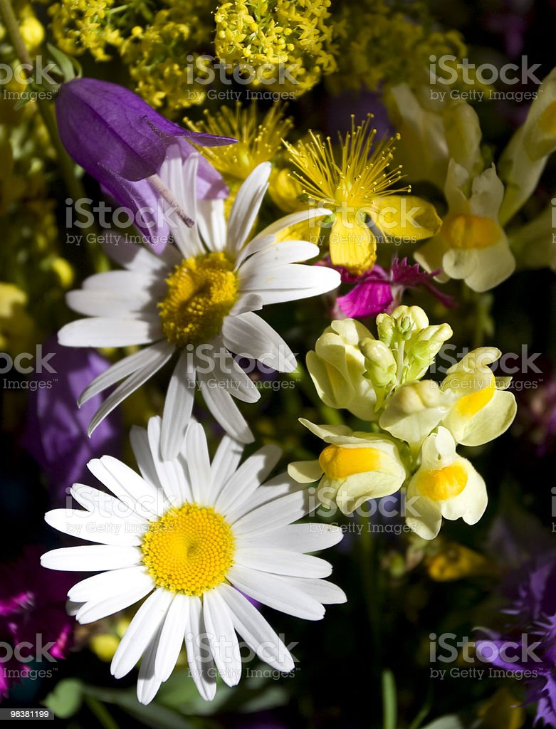 Colorful Wildflowers Bouquet royalty-free stock photo