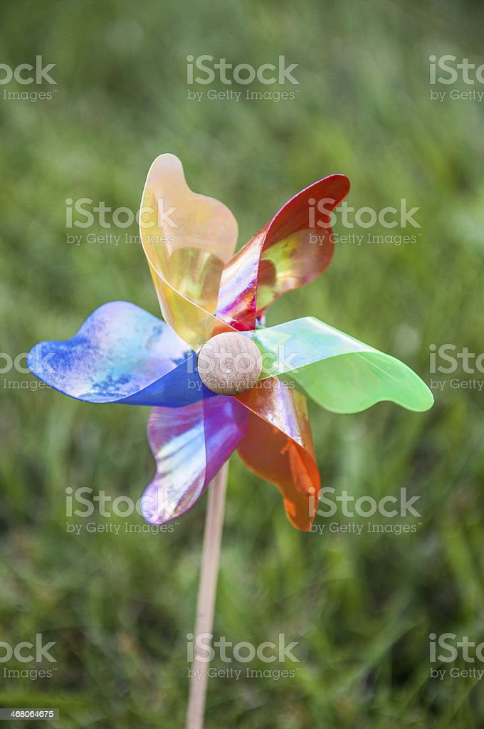 colorful wind rose royalty-free stock photo