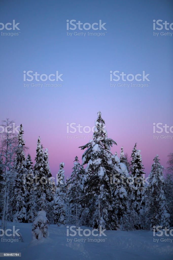 Colorful Winter landscape with heavy snow stock photo