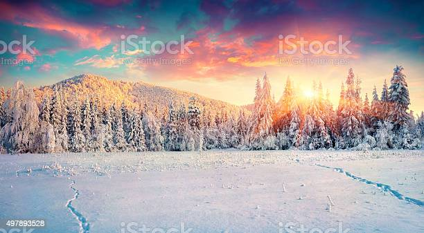Colorful winter panorama in the carpathian mountains picture id497893528?b=1&k=6&m=497893528&s=612x612&h=1vbcneuo i svqelnb5ajckzd2al77evdy p1izoldc=