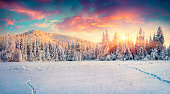 Colorful winter panorama in the Carpathian mountains.