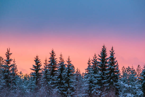 Colorful winter stock photo
