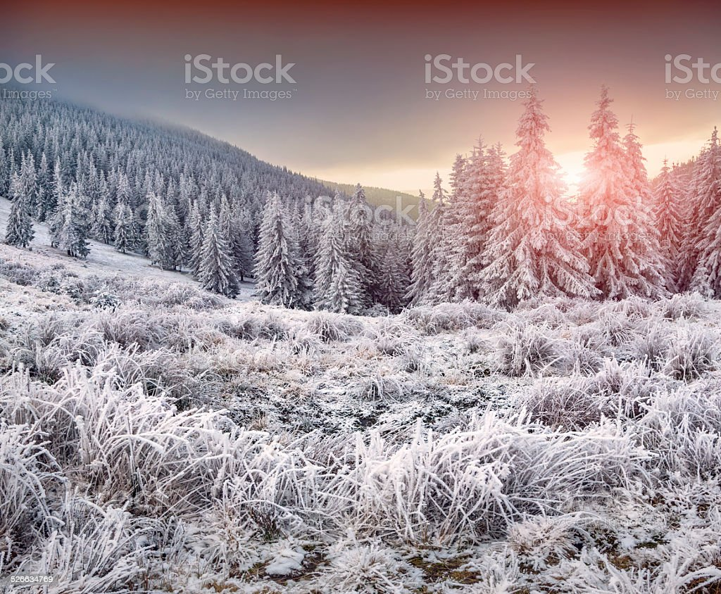 Colorful winter sunrise in the mountains stock photo