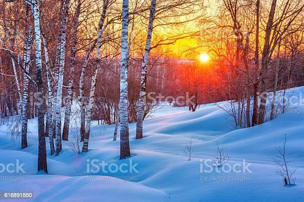Colorful winter sunset picture id616891550?b=1&k=6&m=616891550&s=612x612&h=jbgzkz5ywgkfxtze uiblrrwqcl yuqemcx o99uf8e=