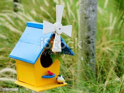 Thailand, Animal Nest, Animal Wildlife, Art And Craft, Bird