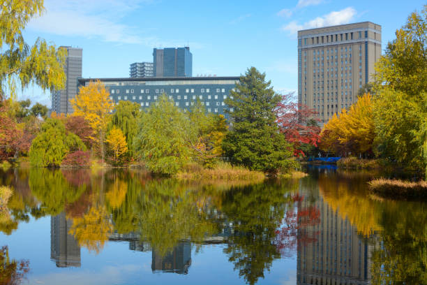 Colorful yellow and red autumn foliage reflections in the lake at Nakajima Park in Sapporo, Japan stock photo