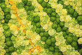 Colorful yellow green pattern of fresh roses, chrysanthemums, carnations, flower texture background, top view, floral abstract wallpaper for design