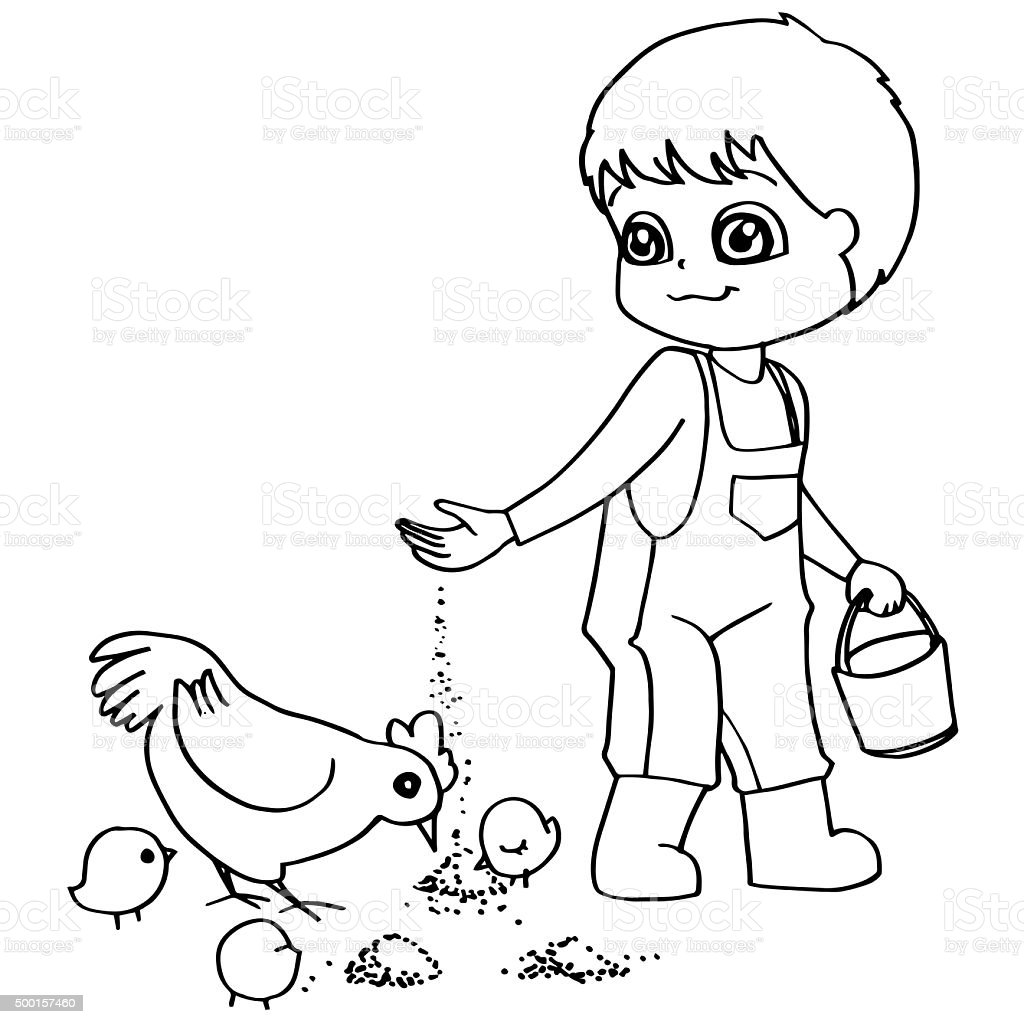 Coloring book  child feeding chicken vector stock photo