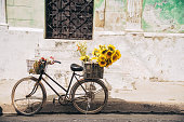 old rusty bicycle with sunflowers in front of old weathered house in Camagüey in Cuba