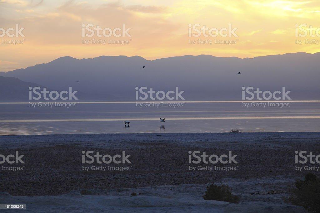 Colors Of The Salton Sea stock photo