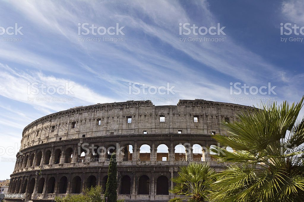 Colosseum and Palm Tree stock photo