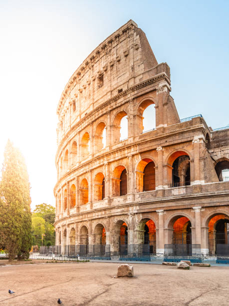 Colosseum, or Coliseum. Morning sunrise at huge Roman amphitheatre, Rome, Italy. Colosseum, or Coliseum. Morning sunrise at huge Roman amphitheatre, Rome, Italy coliseum rome stock pictures, royalty-free photos & images
