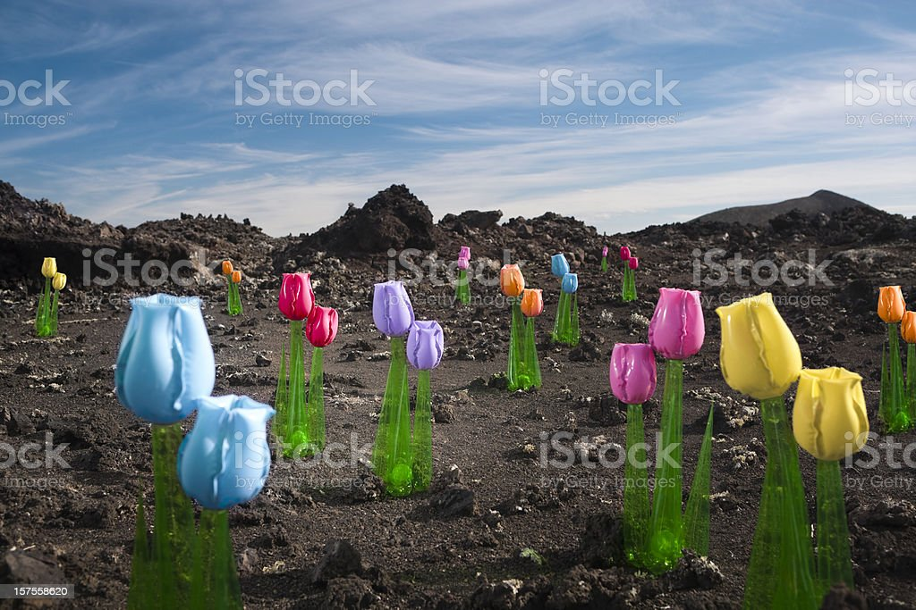 Colouful inflatable flowers royalty-free stock photo