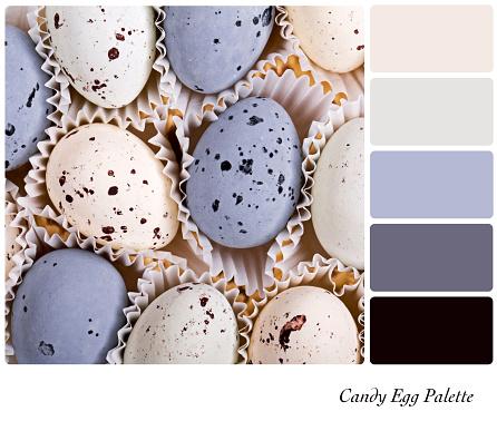 Colour palette template