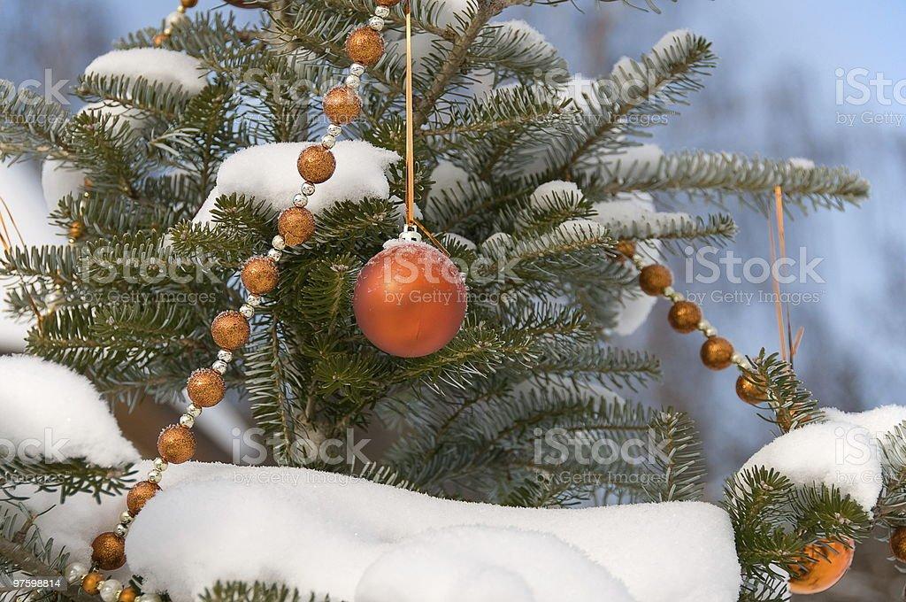 Sphère coloré sur un arbre en fourrure photo libre de droits