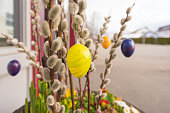 Coloured Easter eggs hangs from a shrub of palm kittens and decorate an entrance at Easter in spring.