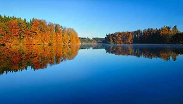 Colourful Autumn Forest reflecting in Calm Lake at Dawn stock photo