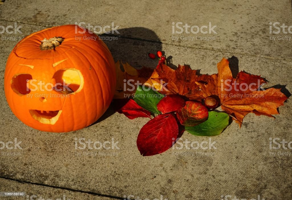 Colourful Autumn leaves and halloween pumpkin arranged on the ground stock photo