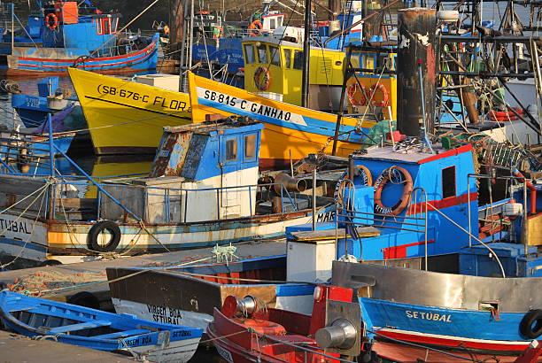 barcos de pesca coloridos na porta - setubal imagens e fotografias de stock